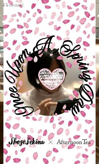 桜 - コピー.jpg