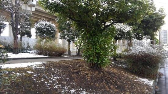 雪景色 (1).jpg