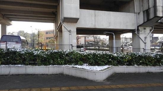 雪景色 (2).jpg